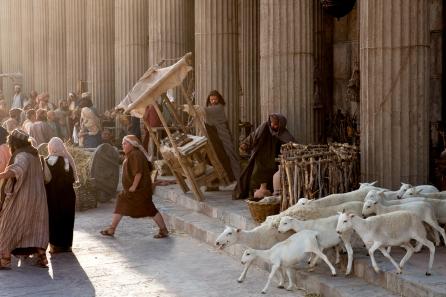 35_jesus-cleanses-the-temple_1800x1200_300dpi_2